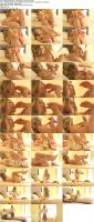 197226726_alexgreycollection_2-surprising_herself_02_s.jpg