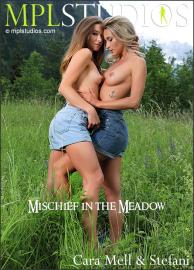 https://t52.pixhost.to/thumbs/7/192957122_mischief-in-the-meadow-cover.jpg